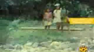 Inti Illimani - El Aparecido (Che Guevara promocional)