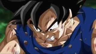 Goku Vs Freeza-Flow Hero AMV