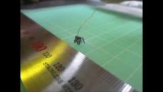 MEMS Micro Robot
