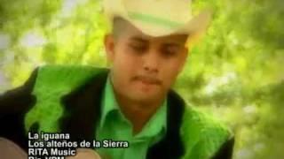 Los Alteños De La Sierra - La Iguana