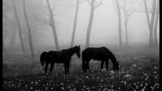 `Secret Garden - Nocturne Enstrümantal Müzik`