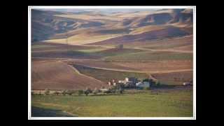 Cemal Öztaş - Celal Abbası Seversen - Söz-Müzik:Cemal Öztaş