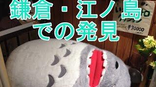【ちい散歩・旅行・観光】鎌倉・江ノ島で見つけたワクワク達 kamakura Enoshima Japan