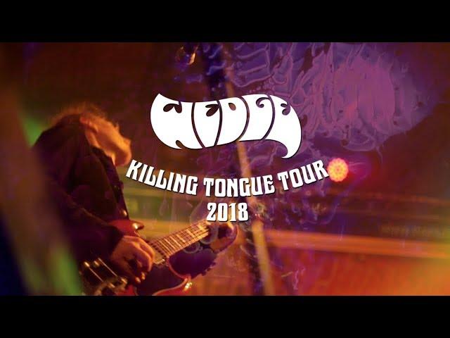 Video teaser de la gira 2018 de Wedge