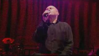 Phil Collins-Groovy Kind Of Love HD