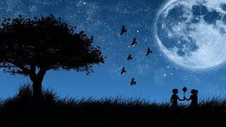 """Rui Veloso """"não há estrelas no céu"""""""