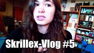 The Biography Video [Skrillex-Vlog #5]