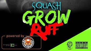 Squash - Grow Ruff - September 2017