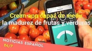 Crean app capaz de medir la madurez de frutas y verduras