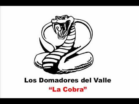 La Cobra de Los Domadores Del Valle Letra y Video