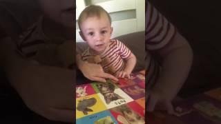 Aprendendo o nome dos animais