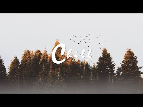 CloZinger - Forest Echo