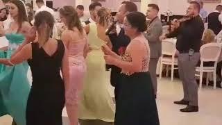 Viorel Pop-live nunta 2017- domnisoara domnisoara