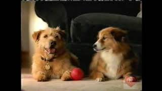 Lady and the Tramp | DVD | Television Commercial | 2006 | Walt Disney Home Video