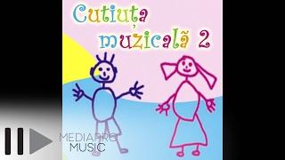 Cutiuta Muzicala 2 - Silvia Dumitrescu - Infloresc gradinile
