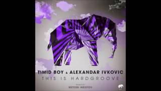 Timid Boy - This Is Hardgroove (Metodi Hristov Remix) [Set About]