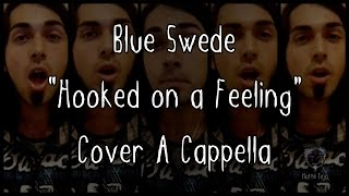 "Blue Swede ""Hooked on a Feeling"" - Cover A Cappella"
