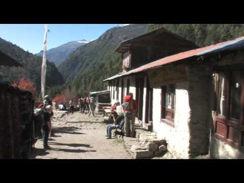 Nepal Trekking – Namche Bazaar to Tengboche