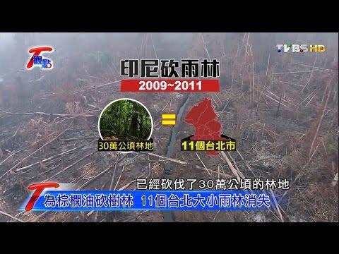 砍雨林、鑿巨坑、生物滅絕,美麗地球生態大浩劫!