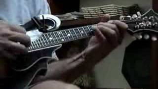 woode wood: mandolin (live instrumental)