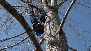 6-Year-Old Boy Who Got Stuck in 50-Foot Tree Says He Will Never Climb Again