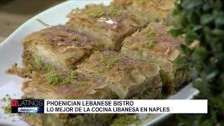 Phoenician Lebanese en el estudio
