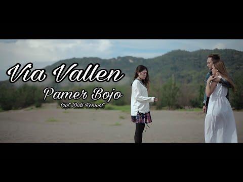 Download Lagu Via Vallen - Pamer Bojo