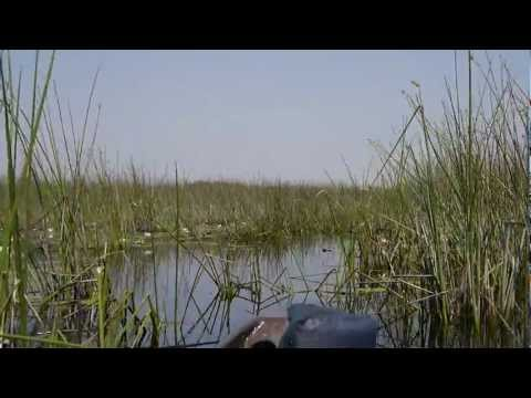 Mokoro Canoeing at the Okavango Delta (Part 5) – 2 Idiots Abroad