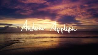 Andrew Applepie - Tropical Thunder