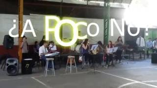 ¿A poco no?- José Madero (cover)