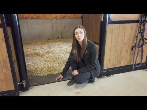 lady next to stall matts for horse stalls