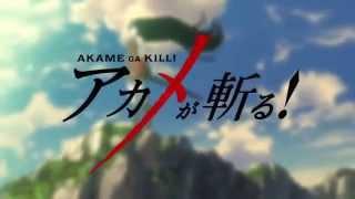 Akame Ga Kill ! OP【Opening 1】New ! HD