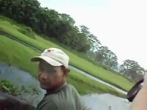 Chitwan National Park Nepal 2012