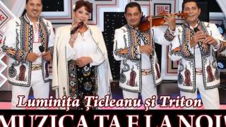 Luminita Ticleanu si Triton - Ce vrei bade de la mine  (Official Audio)
