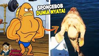 Aslinya Beneran Kekar?! Inilah Karakter Film SpongeBob di Dunia Nyata