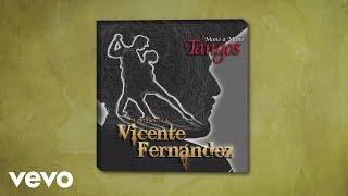 Vicente Fernández - Cristal (Cover Audio)
