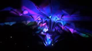 Module Virus @Ritual Festival 2015