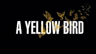 Singapore Film Festival 2017  -  A Yellow Bird