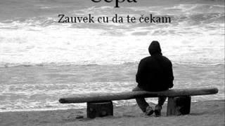 Čepa - Zauvek cu da te čekam 2016 (Official Audio)