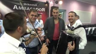 Janino krstenje - Violina