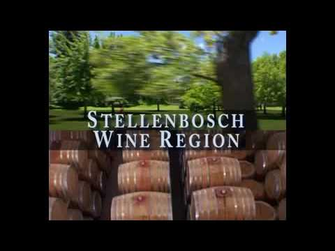 Stellenbosch Wine Region – Cape Winelands, South Africa