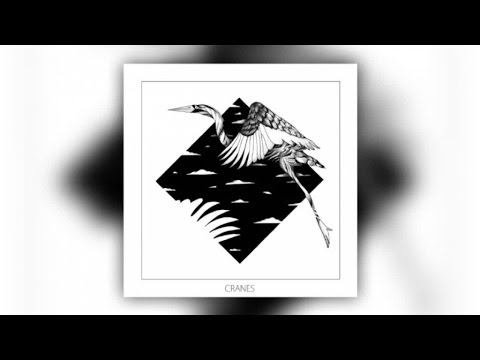 monkey-safari-cranes-kolsch-remix-official-audio-clippers-sounds