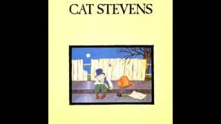 Cat Stevens - The Wind (Host Bodies Remix)