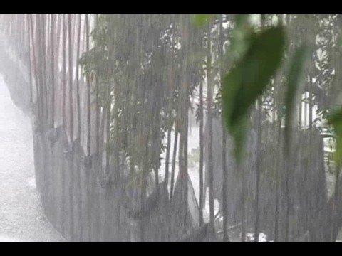 Rainfall -Bangladesh '08