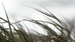 이소라 - 바람이 분다
