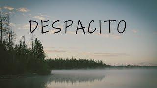 Despacito - Luis Fonsi ft. Daddy Yankee (Instrumental) | Dj VibeRay (Remix)