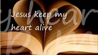Keep My Heart alive by Sanctus Real