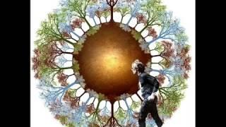 Spinetta La miel en tu ventana (Pencerendeki bal) - Leandro Kalen