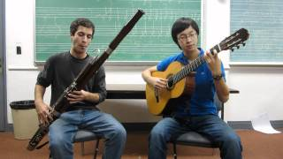 Title Theme from Ocarina of Time Guitar and Bassoon Cover