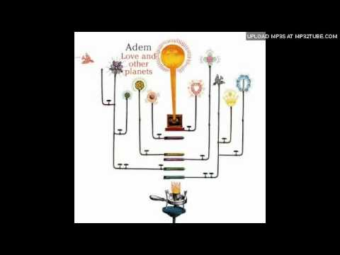 adem-warning-call-ungiornodellanno